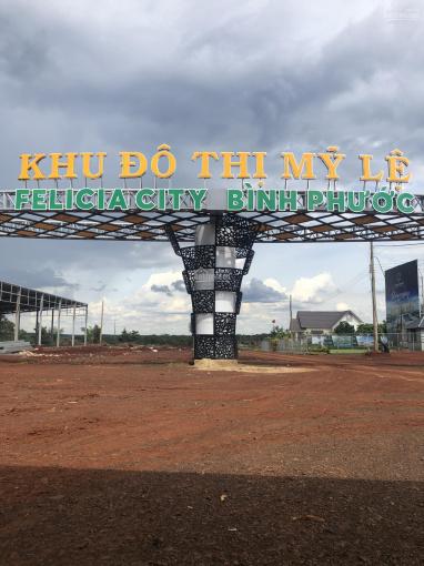 Bán đất đối diện khu du lịch sinh thái Mỹ Lệ Bình Phước 500tr/nền ảnh 0