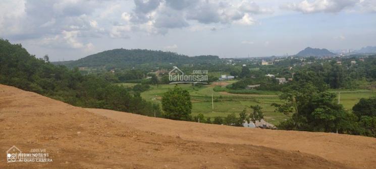 Chính chủ cần bán mảnh vườn thổ cư tại Lương Sơn Hoà Bình ảnh 0