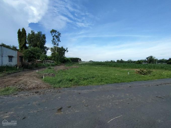 Đất Láng Dài - Đất Đỏ, gần sân bay Lộc An - giá sỉ, mặt tiền đường, giá siêu tốt ảnh 0
