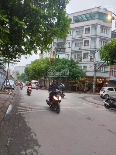 Bán gấp nhà mặt phố Thiên Hiền - vỉa hè - vị trí đẹp nhất phố - 58m2 * 5T, MT 4,2m, giá 18.2 tỷ ảnh 0