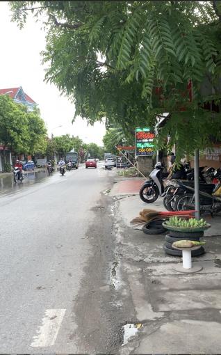 Bán đất Hy Tái, Hồng Thái, An Dương. Gần đường 351, giá hơn 700tr ảnh 0