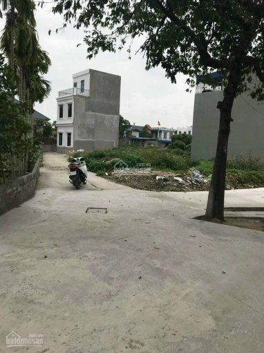 Bán đất Minh Kha, Đồng Thái, An Dương ảnh 0