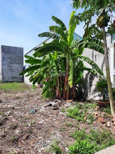 Cần bán đất chính chủ gần UBND xã Đức Hòa Hạ - huyện Đức Hòa, sổ hồng riêng, DT 125m2, giá bán 1 tỷ ảnh 0