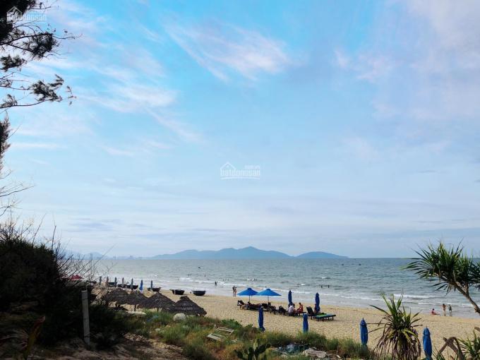 Bán lô đất 783m2 Biển An Bàng - Hội An, cách Biển 150m. Giá rẻ nhất thị trường chỉ 22tr/m2 ảnh 0