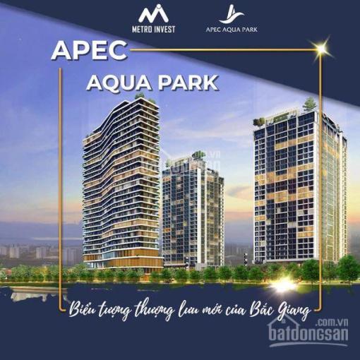 Bán căn hộ chung cư cao cấp Aqua Park - TP Bắc Giang - từ 1 đến 3 phòng ngủ ảnh 0