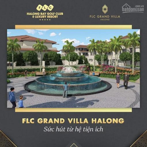 Biệt thự đồi FLC Grand Villa Halong - sức hút từ hệ tiện ích ảnh 0