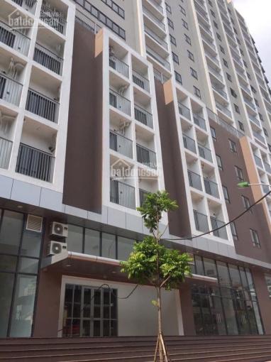 Cho thuê sàn VP tại chung cư C1 Thành Công, DT 70m2-174m2- 206m2, LH 0396993328 Trang ảnh 0