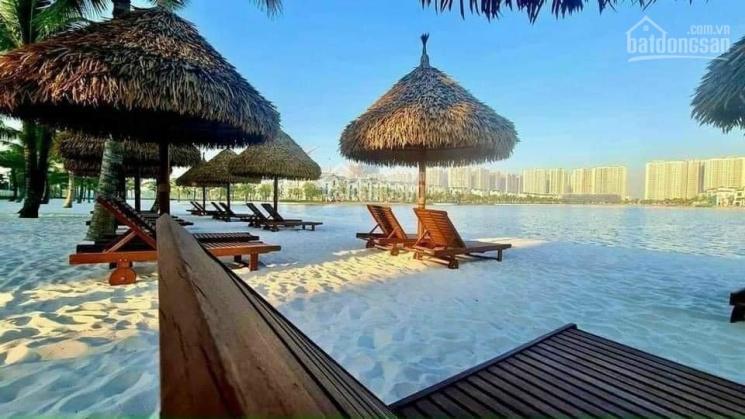 Quỹ 10 căn biệt thự, shophouse giá tốt nhất dự án Vinhomes Ocean Park, LH 0972 794 993 ảnh 0