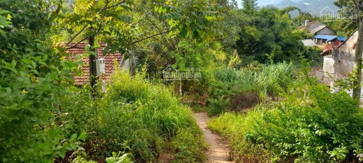 Đất mặt đường QL 43, giá siêu rẻ phù hợp đầu tư tại Mường Sang, Mộc Châu ảnh 0