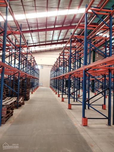 Công ty Hoa Phượng cho thuê kho xưởng Quận Gò Vấp. Có kho full dịch vụ, quản lý (300m2 đến 4000m2) ảnh 0