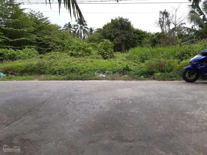 Đất nền, thổ cư, xã Tam Phước - Châu Thành - Bến Tre DT: 975m2. Giá 1,9 tỷ đồng ảnh 0