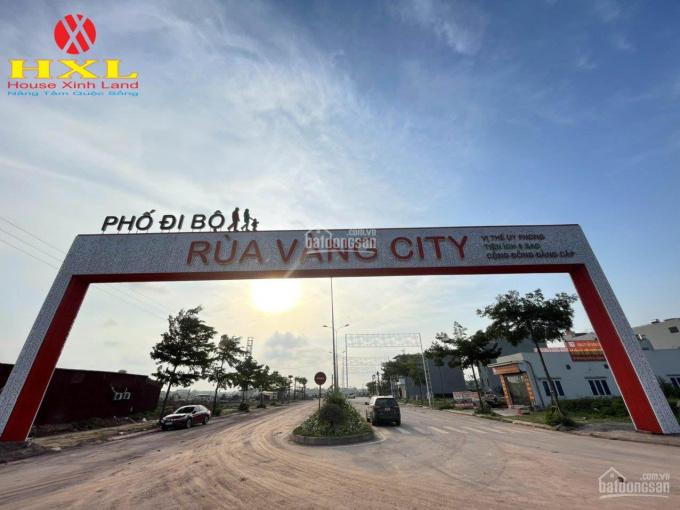 Mở bán đất nền dự án Rùa Vàng City - thị trấn Vôi - Bắc Giang ảnh 0