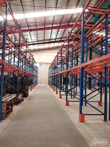 CT Hoa Phượng cho thuê kho xưởng Huyện Hóc Môn, Có kho dịch vụ quản lý (260m2 đến 11.000m2) ảnh 0